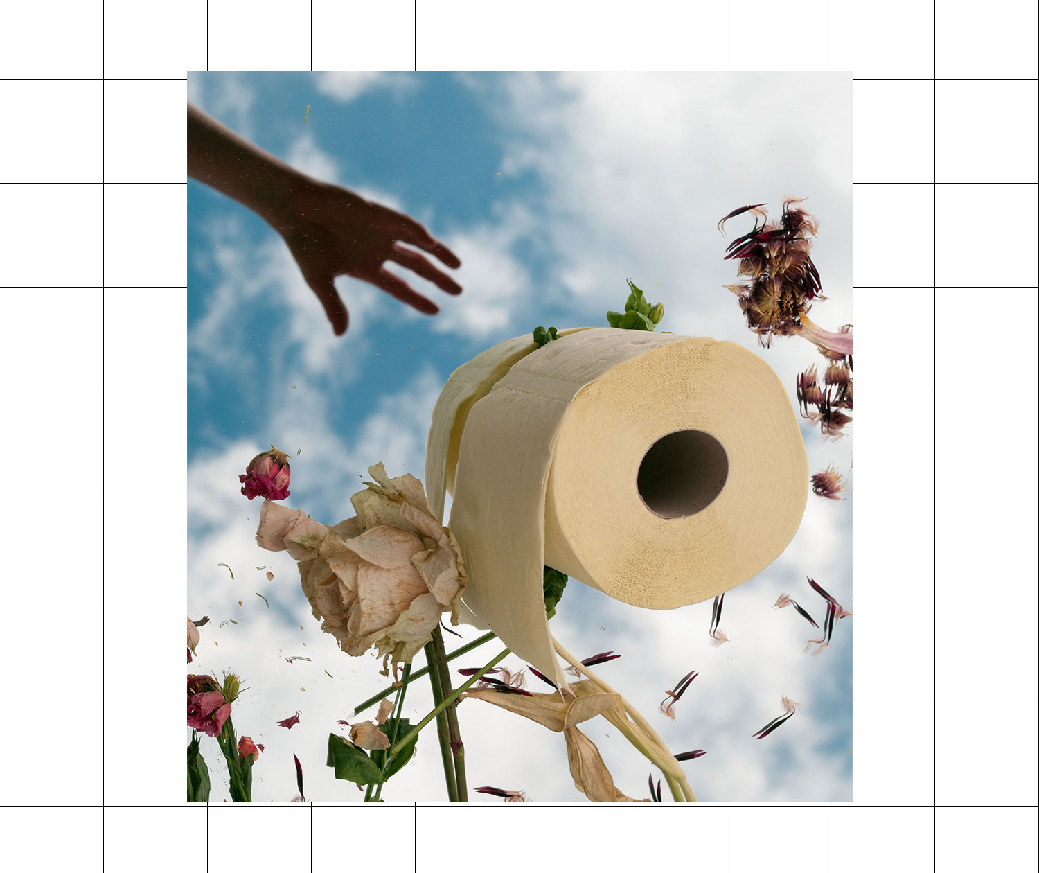 Arty montage with a hand reaching for a roll of toilet paper, based in a field of petals and leaves